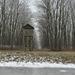 Az erdő őrtonya