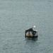 05. Fiumei kikötő