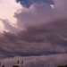 08.06 vihar 1
