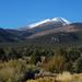 US 2010 Day28  046 Great Basin NP, NV