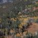 US 2010 Day28  049 Great Basin NP, NV