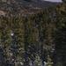 US 2010 Day28  078 Great Basin NP, NV