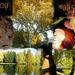 Album - őszi képek