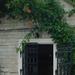 Wine cellar in Tokaj
