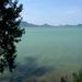 Zöld tenger