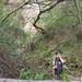 Album - 20070407 ősbuda