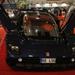 Lion V8